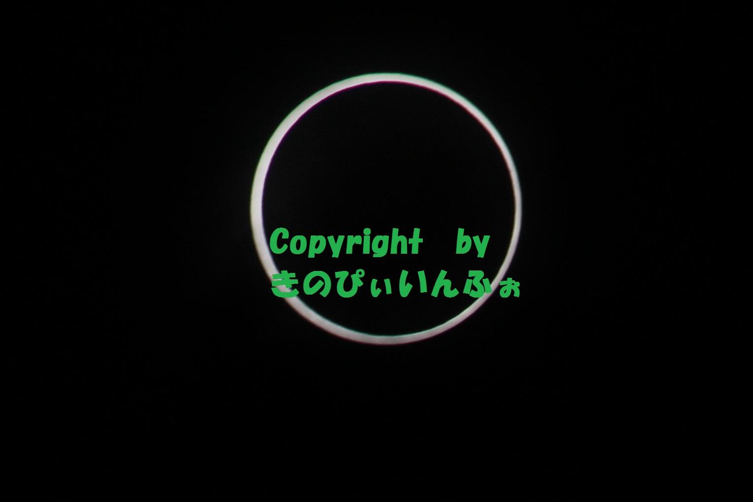 金環日食取ったどぉ~…いや、撮ったどぉ~
